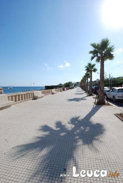 Lungomare Santamaria Leuca, il magnifico Lungomare della Marina di Leuca dopo la piantumazione delle palme