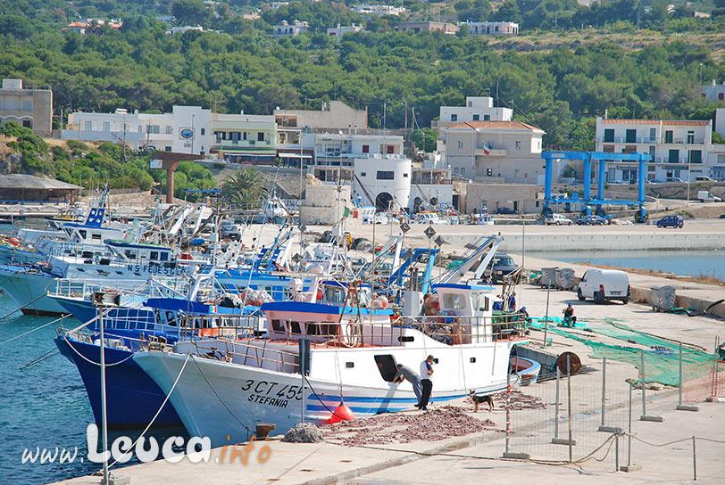 Paranze dei Pescatori al porto di Leuca