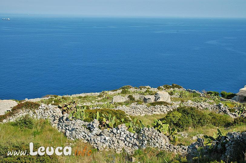 Parco Costa Otranto Santa Maria di Leuca Bosco di Tricase