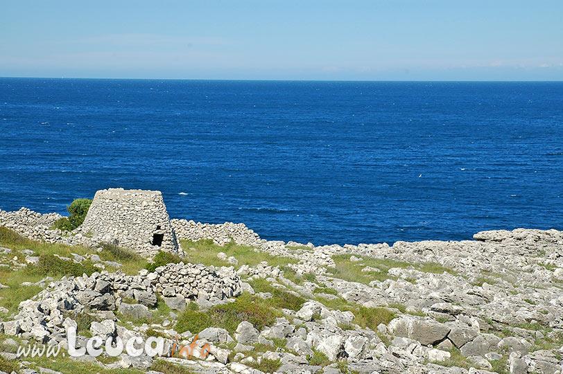 Litoranea del Parco Regionale Costa Otranto S.M. di Leuca Bosco di Tricase