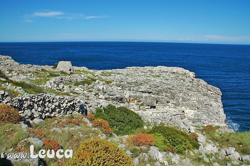 Paesaggio del Parco Costa Otranto Santa Maria di Leuca Bosco di Tricase